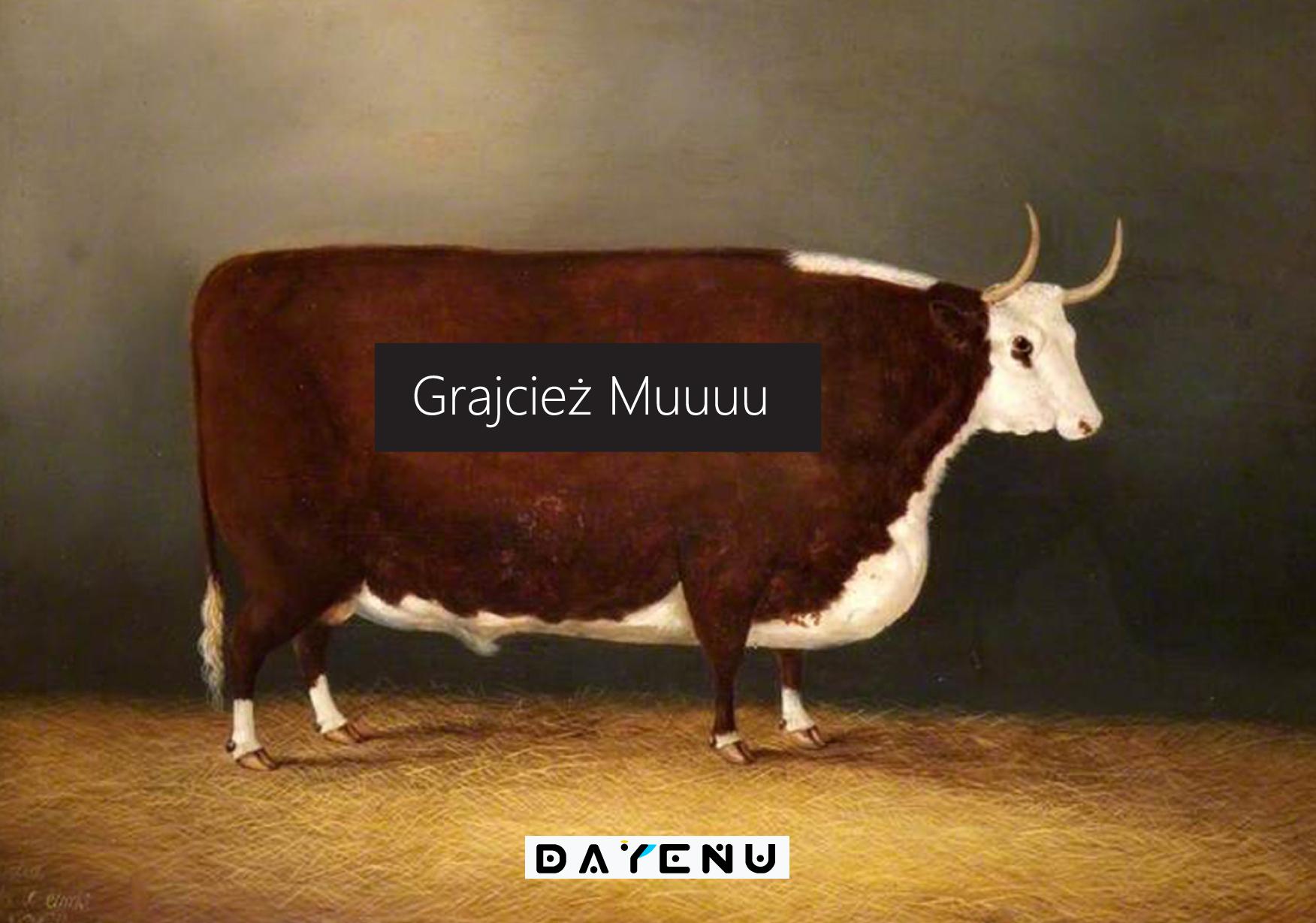 Grajcież Muuuu!